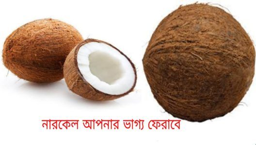 The way to return fortune with coconut